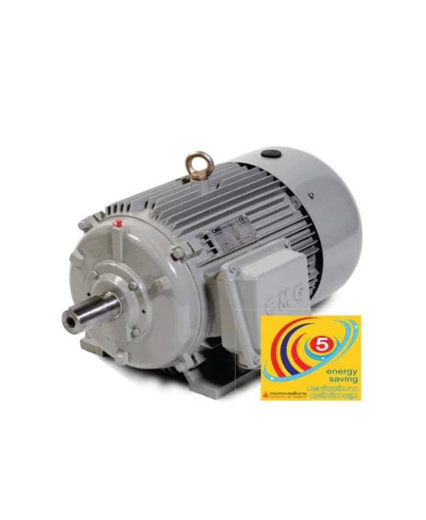 มอเตอร์ประสิทธิภาพสูง CMG (IEC Standard)