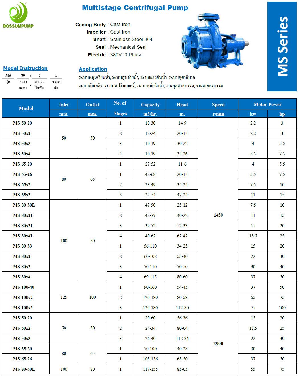 ปั๊มหลายใบพัด Multistage (MS Series)